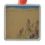 Mojave Indigo Bush and Kelso Dunes Metal Ornament