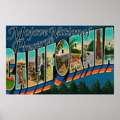 Mojave Nat'l Preserve, California Poster