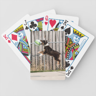 Mojo in Motion Bicycle Playing Cards