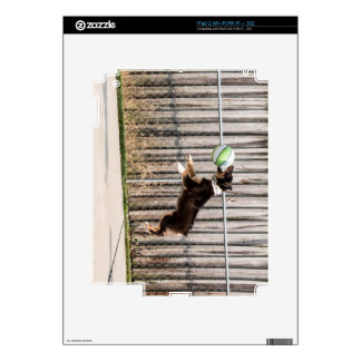 Mojo in Motion Decal For iPad 2