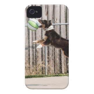 Mojo in Motion iPhone 4 Covers