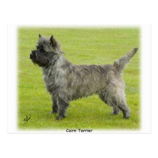 Mojón Terrier 9R071D-129 Postales