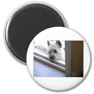 Mojón Terrier de Zoe Imán Redondo 5 Cm