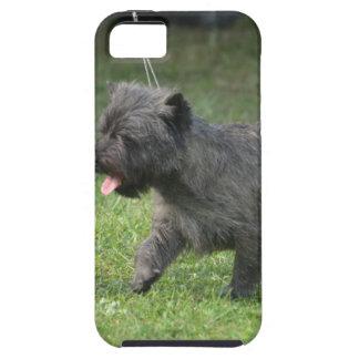 Mojón Terrier iPhone 5 Case-Mate Cárcasa