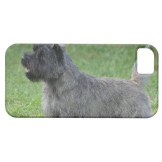 Mojón Terrier iPhone 5 Case-Mate Protector