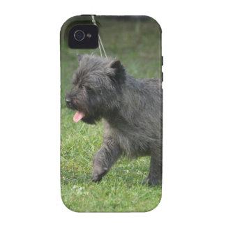 Mojón Terrier Vibe iPhone 4 Funda