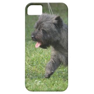 Mojón Terrier iPhone 5 Carcasa