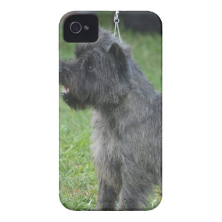 Mojón Terrier lindo Case-Mate iPhone 4 Cárcasas