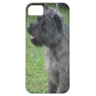 Mojón Terrier lindo iPhone 5 Carcasa