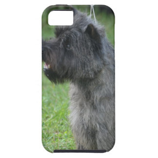 Mojón Terrier lindo iPhone 5 Protector