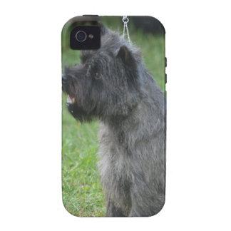 Mojón Terrier lindo iPhone 4 Funda