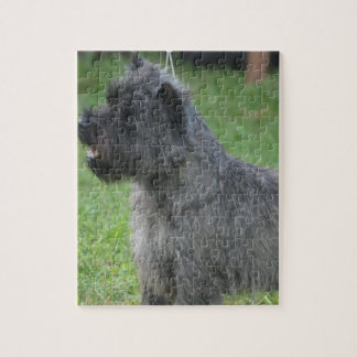 Mojón Terrier lindo Puzzles Con Fotos
