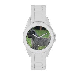 Mojón Terrier lindo Relojes De Mano