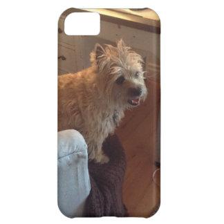 Mojón Terrier sonriente