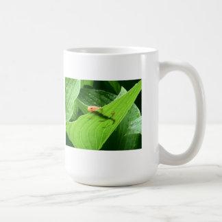 Mojo's Little Red Eft Classic White Coffee Mug