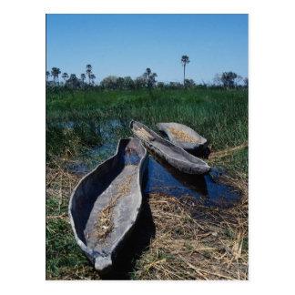 Mokoro s Okavango Delta Botswana Postcard