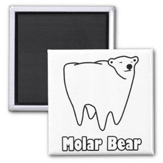 Molar Bear Polar Tooth Bear 2 Inch Square Magnet