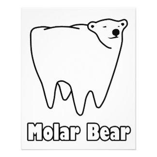 Molar Bear Polar Tooth Bear Flyer
