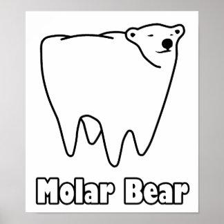Molar Bear Polar Tooth Bear Poster