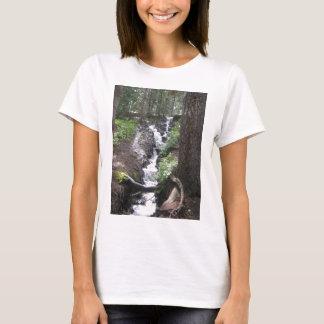 Molas Lake Waterfall T-Shirt