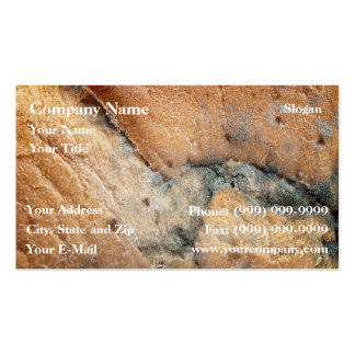 Mold Business Card