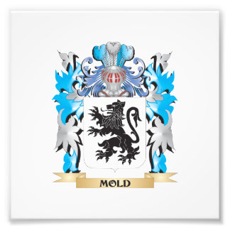 Mold Coat of Arms - Family Crest Art Photo