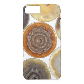 Mold culture iPhone 8/7 case