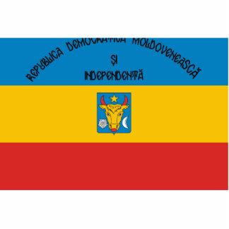 Moldavian Democratic Republic, Moldova Standing Photo Sculpture