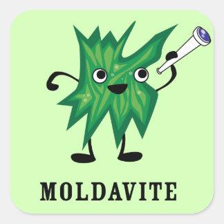 Moldavite Square Sticker