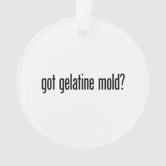 molde conseguido de la gelatina