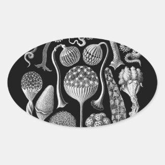 Moldes de limo en blanco y negro calcomanía de ovaladas