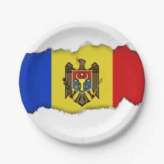 Moldova Flag Paper Plate