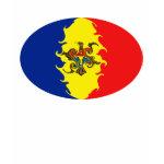 Gnarly Moldovan Flag T-Shirt