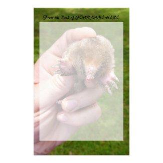 mole in hand against grass.jpg custom stationery