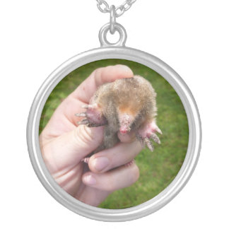 mole in hand against grass.jpg silver plated necklace