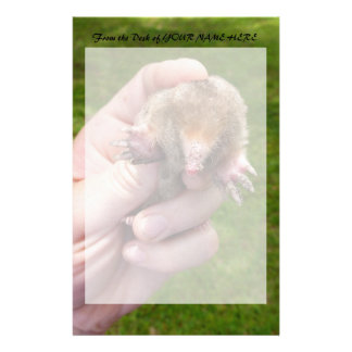mole in hand against grass.jpg stationery