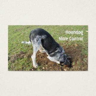 Molecatcher hound dog digging business card
