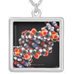 Molécula de la DNA. Modelo molecular de la DNA Joyerías