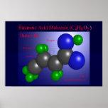 Molécula del ácido butanóico (impresión) poster