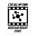 Molecular Biology Stunts Postcard