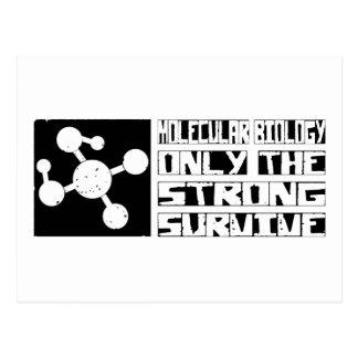 Molecular Biology Survive Postcard
