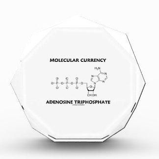 Molecular Currency Adenosine Triphosphate (ATP) Award