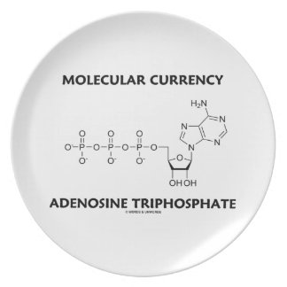 Molecular Currency Adenosine Triphosphate (ATP) Dinner Plate