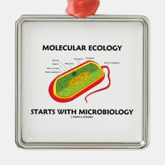 Molecular Ecology Starts With Microbiology Square Metal Christmas Ornament