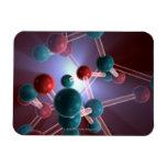 Molecular Structure of Caffeine. Vinyl Magnet