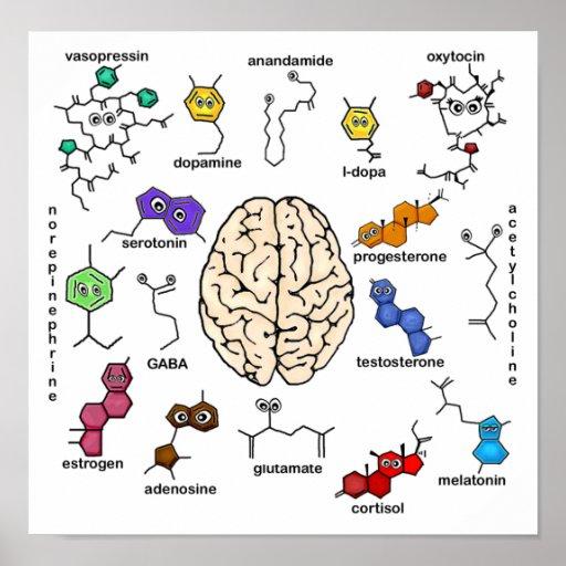 ¡Moléculas a montones! Poster