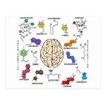 Molecules Galore! Postcard