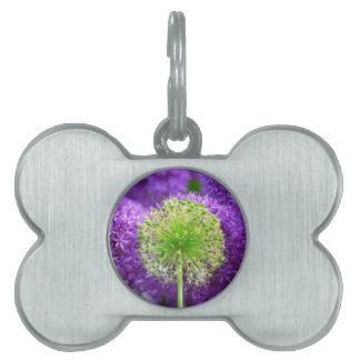 Molestia de la flor placas de nombre de mascota