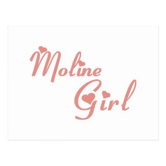 Moline Girl tee shirts Postcard