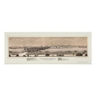 Moline, IL Panoramic Map - 1873 Poster